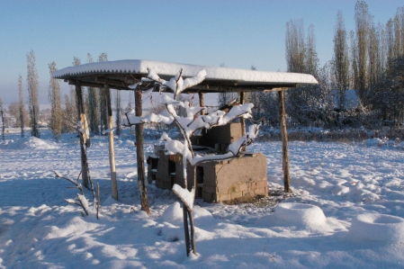Base Camp - Barbecue area