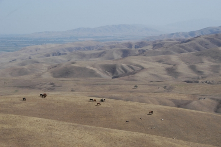 Quad Offroad Tour from Kyrgyzstan in the Taklamakan desert