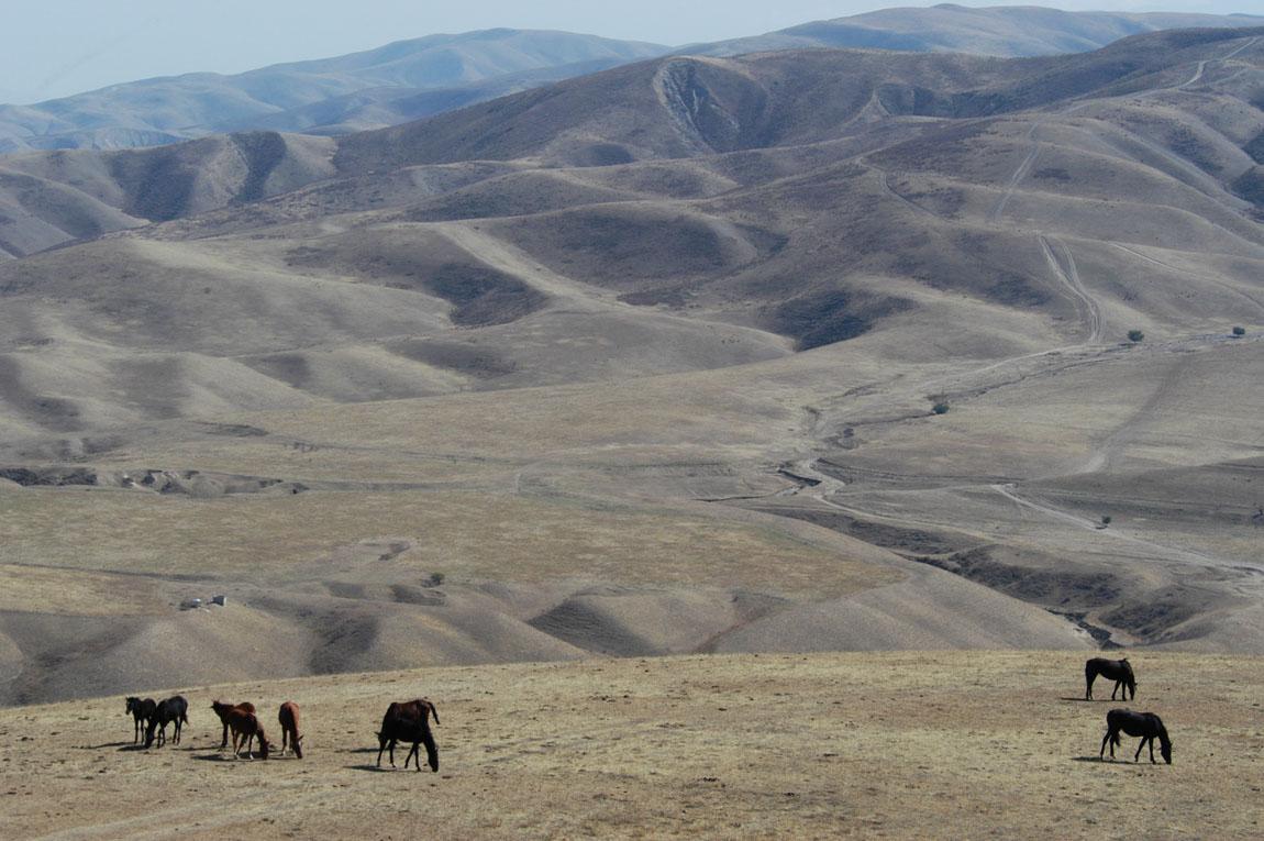 Adventure Tour - Taklamakan desert