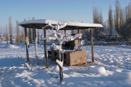 Base Camp - Barbecue area